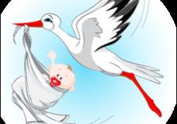 Anyasági támogatás